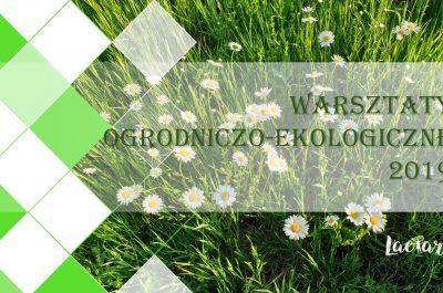 Fundacja-Laetare_warsztaty-ekologiczno-ogrodnicze