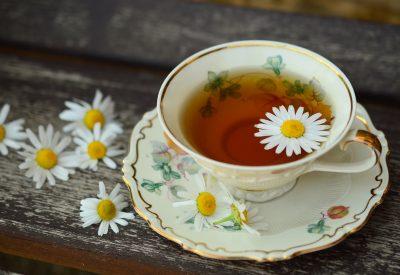 fundacja leatare warsztaty herbaciane
